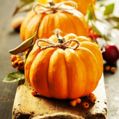 Pumpkin creations